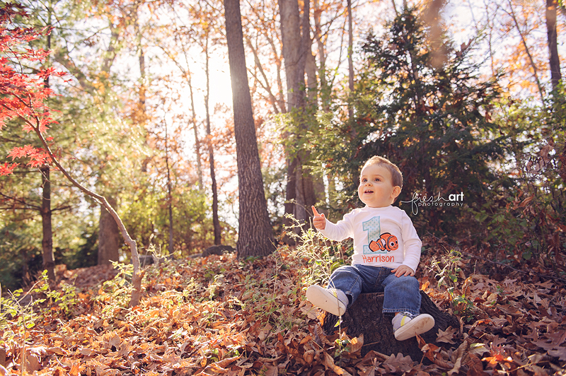 Harrison turns one! | St. Louis Children and Family Photography